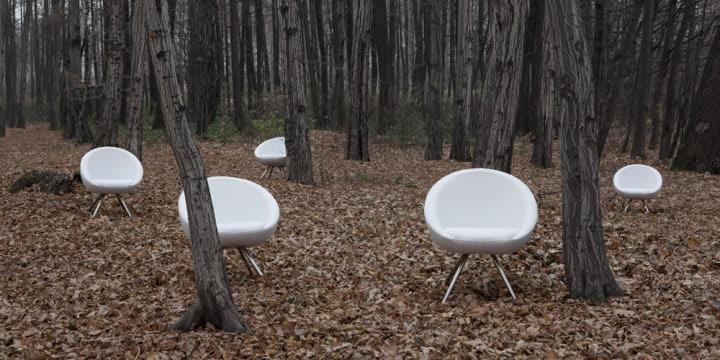 scaune albe